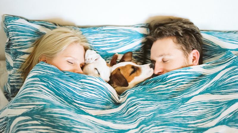 Làm thế nào để có được giấc ngủ tuyệt vời cùng bạn đời?