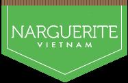 Narguerite Việt Nam